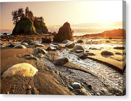 Cliffs Canvas Print - Olympic National Park Landscapes by Galyna Andrushko