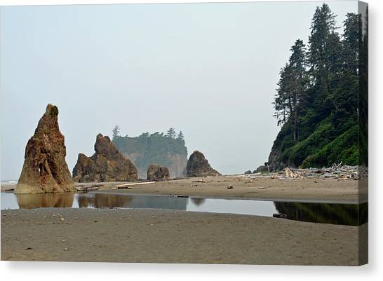 Olympic National Park Seastacks Canvas Print