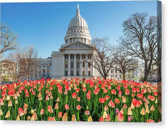 Capitol Building Canvas Print - On A Bed Of Tulips by Todd Klassy