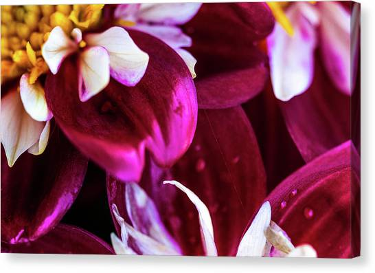 Canvas Print featuring the photograph One Strand by Onyonet  Photo Studios