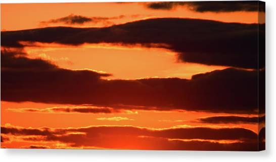 Orange And Black Canvas Print