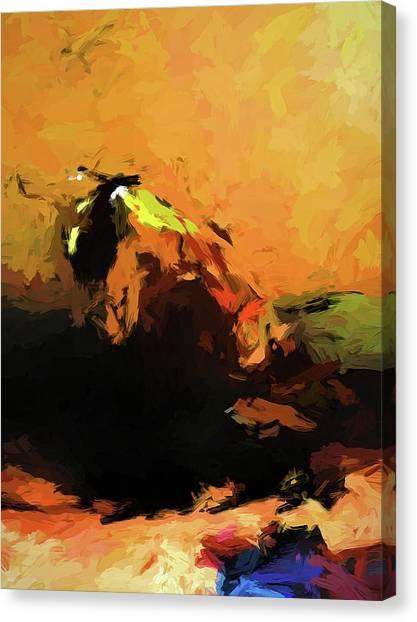 Orange Bull Cat Canvas Print