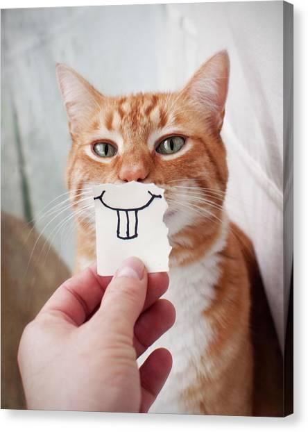 Orange Cat Face Canvas Print