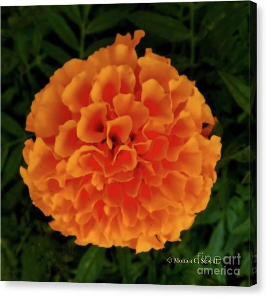 Orange Flowers No. O15 Canvas Print