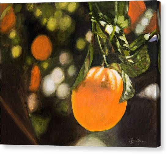 Fruit Trees Canvas Print - Oranges by Kirsty Rebecca