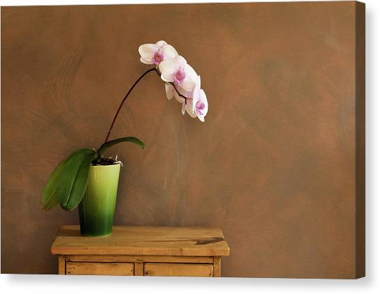 Vase Of Flowers Canvas Print - Orchid Still Life Hz by Yinyang