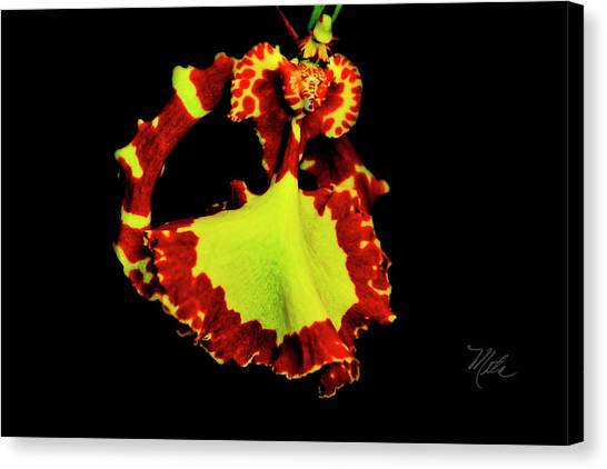 Orchid Study Nine Canvas Print