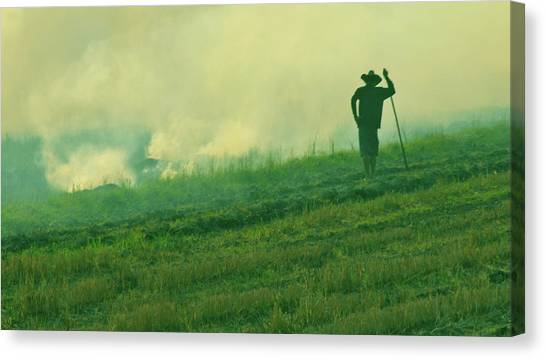 Organic Farmer Canvas Print
