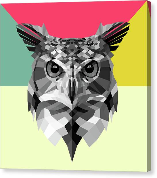 Lynx Canvas Print - Owl by Naxart Studio