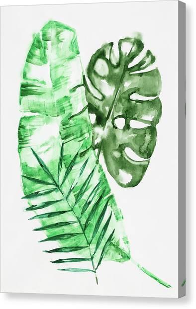 Palm Leaves-banana, Coconut, Monstera Canvas Print