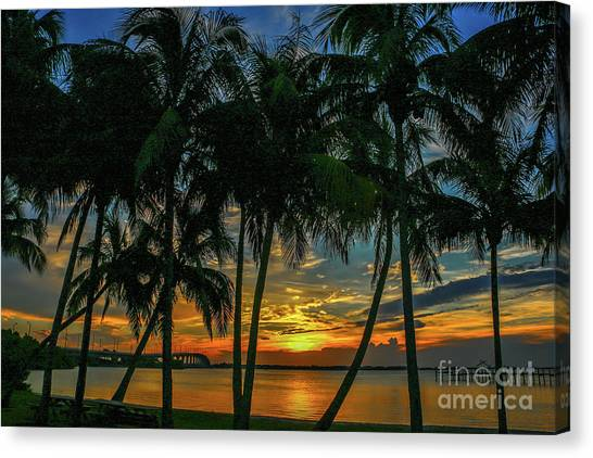 Canvas Print featuring the photograph Palm Tree Lagoon Sunrise by Tom Claud