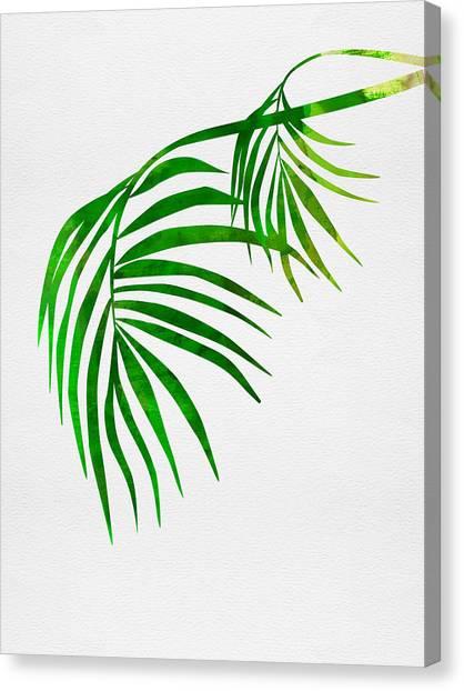 Cacti Canvas Print - Palm Tree Leafs by Naxart Studio