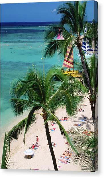 Palm Trees Over Waikiki Beach, Waikiki Canvas Print