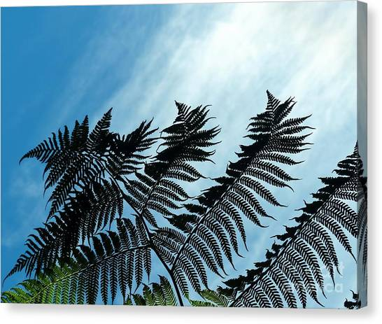 Palms Flying High Canvas Print