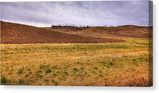 Canvas Print featuring the photograph Palouse Farmland by David Patterson