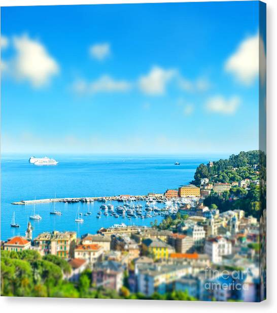Panoramic View  With Tilt-shift Effect Canvas Print by Liligraphie