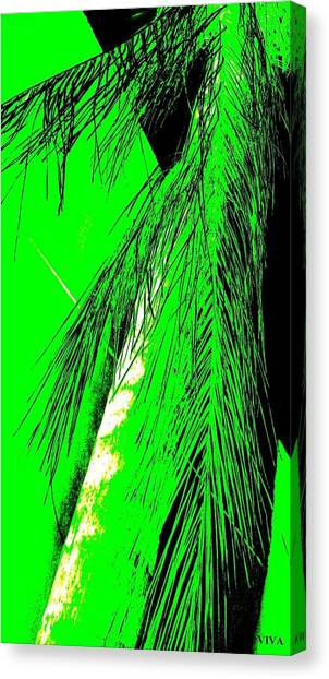 Canvas Print featuring the photograph Paradise Palms Green by VIVA Anderson