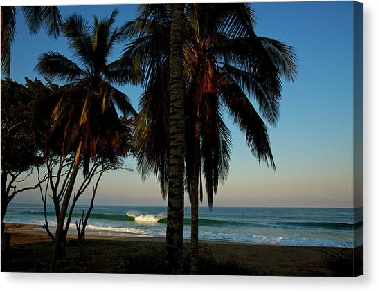 Canvas Print featuring the photograph Paraiso by Nik West
