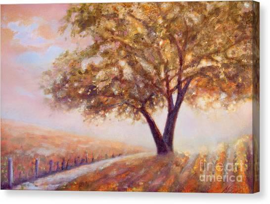Paso Robles Oak Tree Canvas Print
