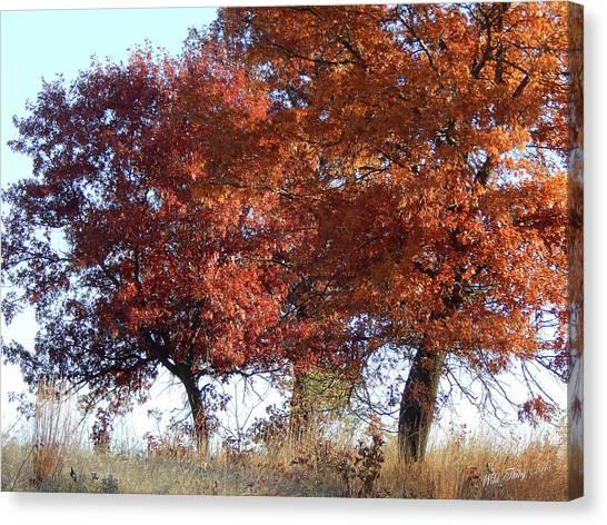 Passing Autumn Canvas Print
