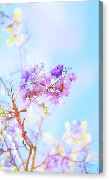 In Bloom Canvas Print - Pastels In The Sky by Az Jackson