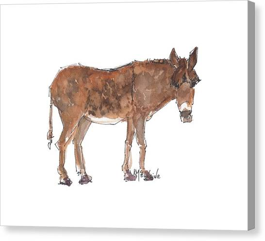 Pasture Boss 2015 Watercolor Painting By Kmcelwaine Canvas Print