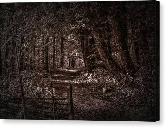 Path In Forest #i0 Canvas Print