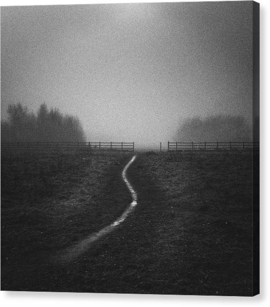 Nottinghamshire Canvas Print - Path In Mist by Doug Chinnery