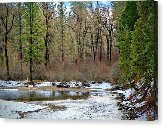Boise National Forest Canvas Print - Payette River Idaho by Ed  Riche