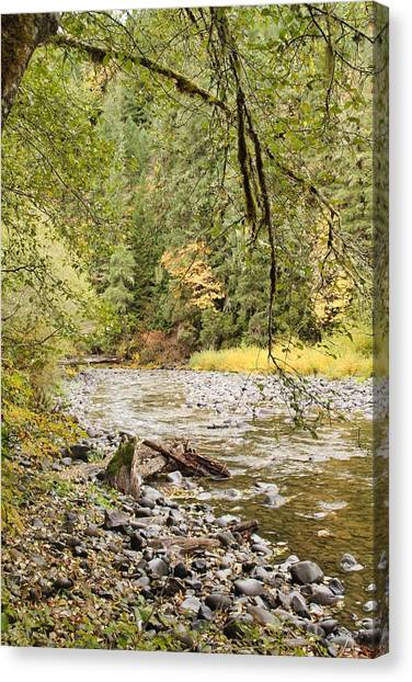 Peaceful Molalla River Canvas Print
