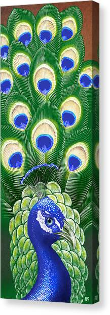 Canvas Print featuring the drawing Peacock by Clint Hansen
