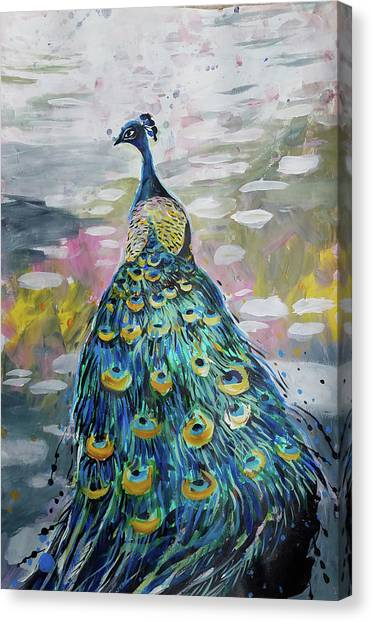 Peacock In Dappled Light Canvas Print