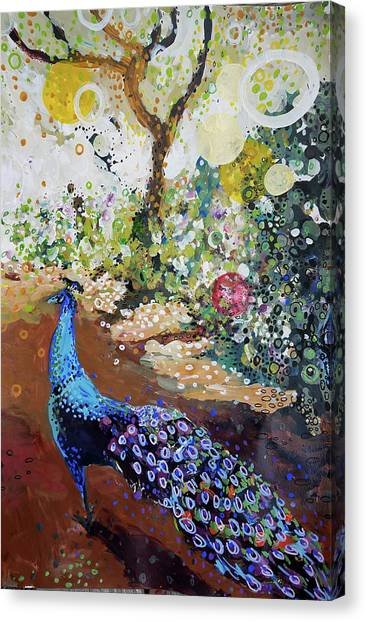 Peacock On Path Canvas Print