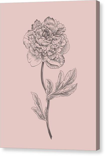 Bouquet Canvas Print - Peony Blush Pink Flower by Naxart Studio