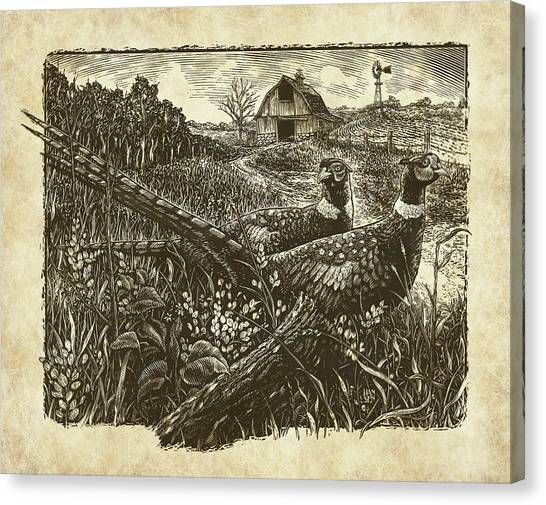 Canvas Print featuring the drawing Pheasants by Clint Hansen