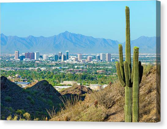 Phoenix Skyline Framed By Saguaro Canvas Print