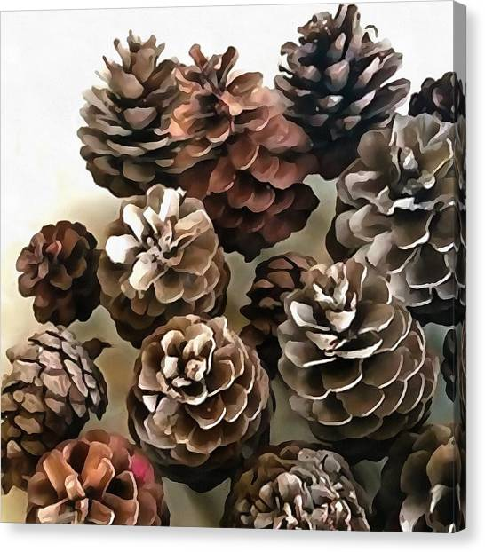 Pine Cones Organic Christmas Ornaments Canvas Print