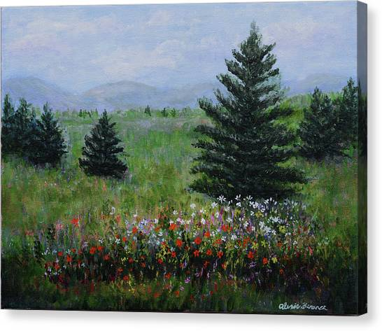 Pines And Wildflowers Canvas Print