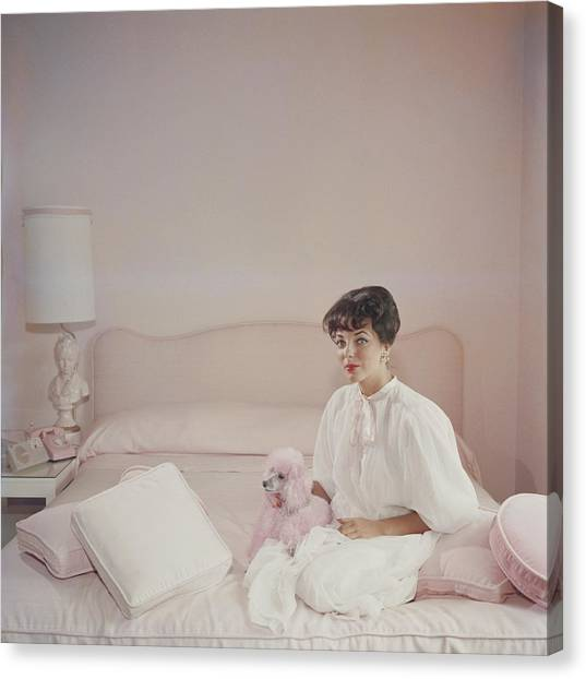 Pink Accessory Canvas Print by Slim Aarons
