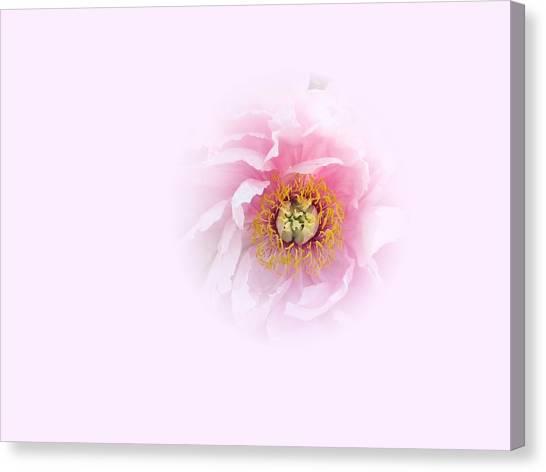 Pink Breath Canvas Print