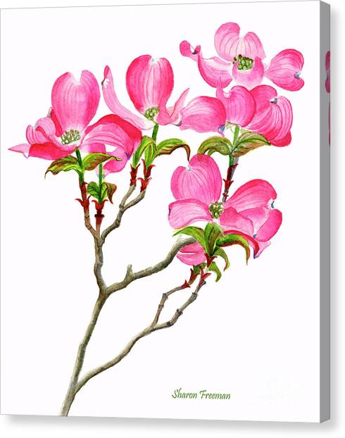Blooming Tree Canvas Print - Pink Dogwood Vertical Design by Sharon Freeman