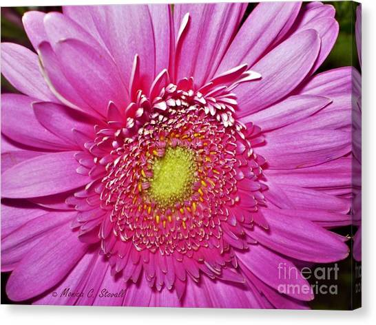Pink Flowers P4 Canvas Print