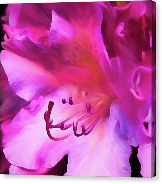 Pink O'keefe Canvas Print