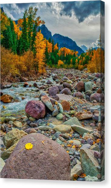 Point Of Color Canvas Print