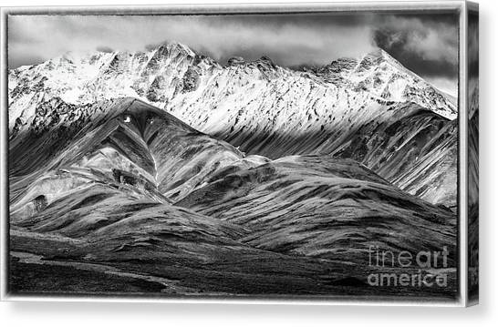 Polychrome Mountain, Denali National Park, Alaska, Bw Canvas Print