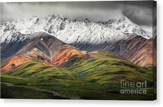 Polychrome Mountain, Denali Np, Alaska Canvas Print