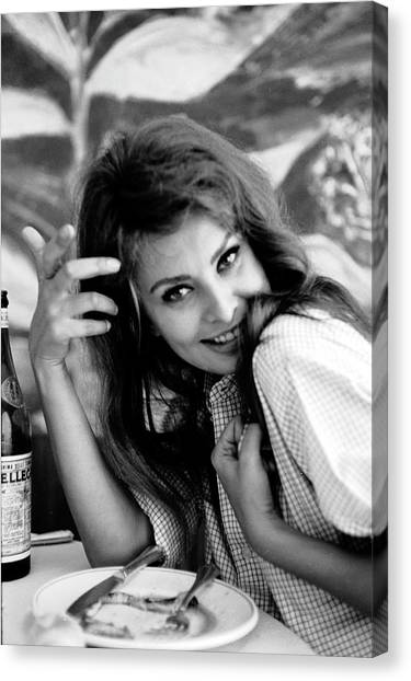 Casual Canvas Print - Portrait Of Sophia Loren by Alfred Eisenstaedt