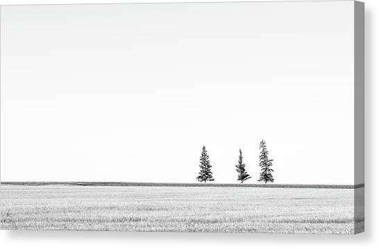 Prairie Woodland Canvas Print