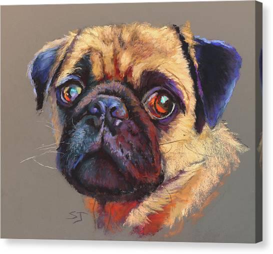 Precious Pug Canvas Print
