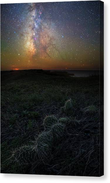 Canvas Print featuring the photograph Pricked  by Aaron J Groen